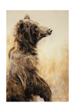 Grizzly Bear 2, 2002 Giclee Print by Odile Kidd