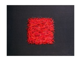 Chillies Giclee Print by Lincoln Seligman