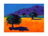 Summertime, 2008 Giclee Print by Paul Powis