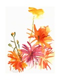 Marigolds and Other Flowers, 2004 Giclee Print by Claudia Hutchins-Puechavy