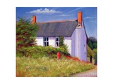 The Red Milk Churn, 2003 Giclee Print by Anthony Rule
