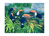 Toucan Talk Reproduction procédé giclée par Lisa Graa Jensen