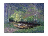 Forest Stream, 2002 Giclee Print by Anthony Rule