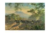 Elephant, Kilimanjaro, 1995 Giclee Print by Tim Scott Bolton