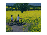 Yellow Field, Kedleston, Derby Gicléedruk van Andrew Macara