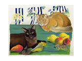 Cats with Fruit Giclee Print by Anne Robinson