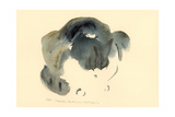 Cat, 1985 Giclee Print by Claudia Hutchins-Puechavy