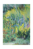 Wild Flowers Giclee Print by Sophia Elliot