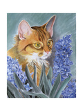 Tosca Giclee Print by Anne Robinson