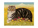 The Oxford Cat, 2001 Giclee Print by Frances Broomfield