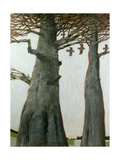 Heartwood Giclee Print by Charlie Baird