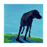 Joe's Black Dog (New View), 2000 Giclee Print by Marjorie Weiss