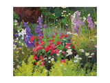 Cottage Garden, 2007/8 Giclee Print by William Ireland