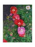 Poppies, 2009 Giclee Print by Ruth Addinall
