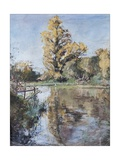 Early Autumn on the River Test, 2007 Giclee Print by Caroline Hervey-Bathurst