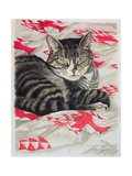 Cat on Quilt Giclee Print by Anne Robinson