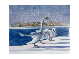 Swans at Kensington Palace Giclee Print by Isabel Hutchison