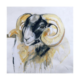 Long Horn Sheep Giclee Print by Lou Gibbs