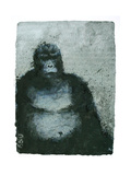 650 Mountain Gorillas, 2008 Giclee Print by Charlie Baird