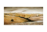 Farm on Hill, Tuscany, 2001 Giclee Print by Trevor Neal