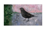 The Early Bird, 2008 Giclee Print by Ruth Addinall