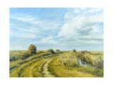 Burnham Norton Marshes, 2004 Giclee Print by Tom Young