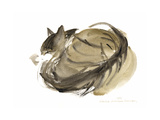 Sleeping Cat, 1985 Giclee Print by Claudia Hutchins-Puechavy