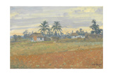Cuban Landscape, 2010 Giclee Print by Julian Barrow