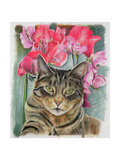 Cat with Sweet Peas Giclee Print by Anne Robinson