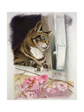Stripy at the Window Giclee Print by Anne Robinson