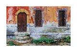 Doorway, Corfu, 2006 Giclee Print by Trevor Neal