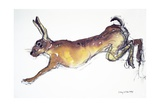 Jumping Hare Giclée-tryk af Lucy Willis