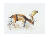 Pisanello Buck, 2006 Giclee Print by Mark Adlington