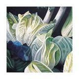 Lettuce and Leeks, 2002 Giclee Print by Pedro Diego Alvarado