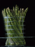 Asparagus in Steamer, 1994 Photographic Print by Norman Hollands