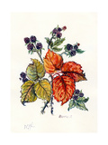 Bramble Giclee Print by Nell Hill