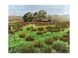 Farm Cumbria, 2008 Giclee Print by Trevor Neal
