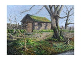Stone Barn, Alport, Derbyshire, 2009 Giclee Print by Trevor Neal