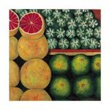 Halved Grapefruit, 1999 Giclee Print by Pedro Diego Alvarado