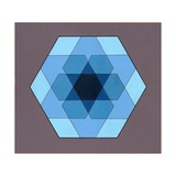 Overlaying Hexagons, 2009 Giclee Print by Peter Hugo McClure