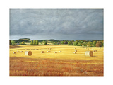Harvested Fields at Kilconquhar, 2001 Giclee Print by Peter Breeden