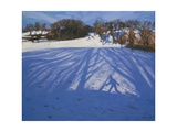 Shadow of Sledger, 2008 Giclee Print by Andrew Macara