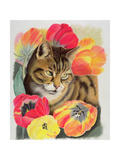 Stripy and Tulip Giclee Print by Anne Robinson