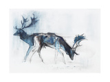 Fallow Bucks, Richmond, 2006 Giclee Print by Mark Adlington