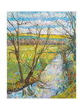 The Cherwell from Rousham II Giclee Print by Erin Townsend