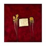Laxmi, 2007 Giclee Print by Faiza Shaikh