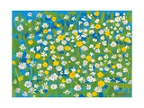 Buttercups and Daisies, 2009 Giclee Print by Sarah Gillard