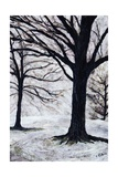 Winter Trees, Greenwich Park, 2004 Giclee Print by Ellen Golla