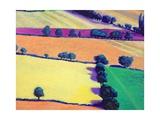 Oil Giclee Print by Paul Powis
