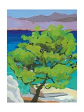 Pine Tree, 2010 Giclee Print by Sarah Gillard